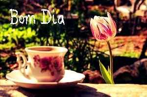 agradável rosa com chá bom dia fotos download