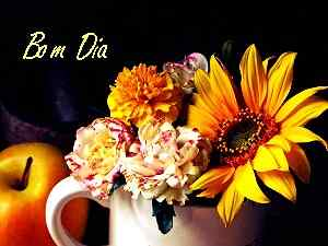 imagem de HD de boas flores de manhã
