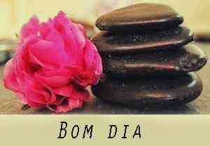 imagem linda rosa com download de chocolate